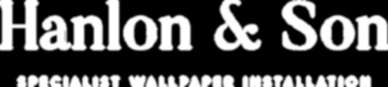 H&S logo full white.png