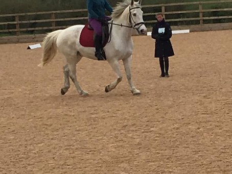 Flatwork with Kelly Turner