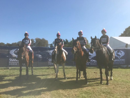 Blenheim Team Eventer Challenge
