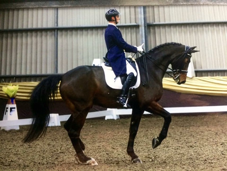 Dressage Training with Tom Graham