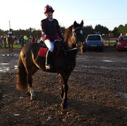 Tayla Lawes Arena Eventing