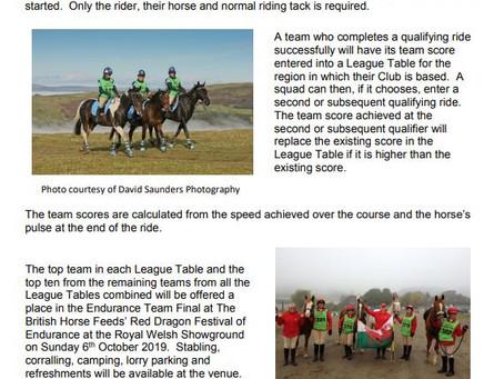 Endurance GB's BRC Endurance Team Championship
