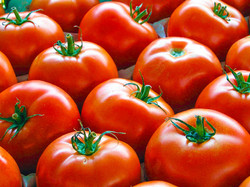 pomodori.1024x768