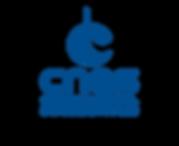 logo-CNES-HD-1024x837.png