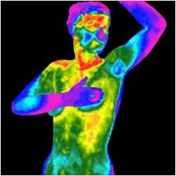 Thermography- Breast Oct. 20, 2020 ONLY