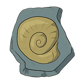 fossil 5.png