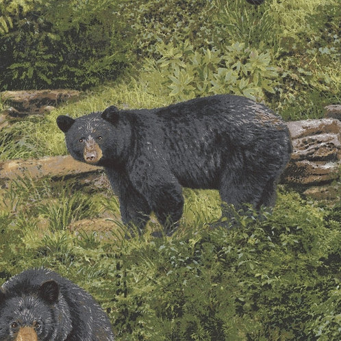 FabriQuilt - Black Bears