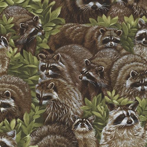 FabriQuilt - Raccoon