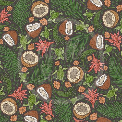 Coconuts (A20-13)