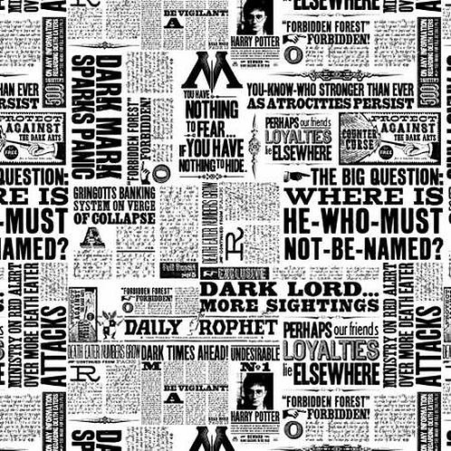 Camelot - Harry Potter Newsprint