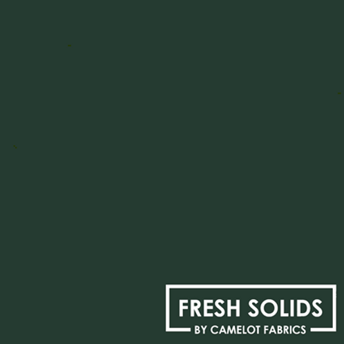 Camelot Fresh Solids - Forest (013)