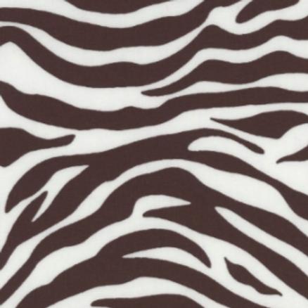 Zebra - Brown on White