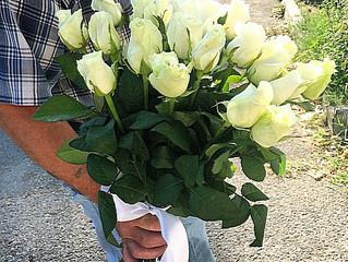 Белые розы с доставкой в Олимпийский парк! Заказать, купить цветы и букеты с доставкой в Адлере, Соч