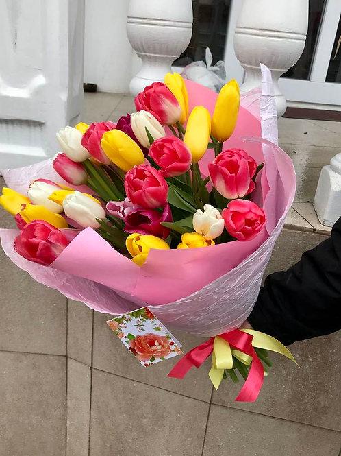 тюльпаны адлер
