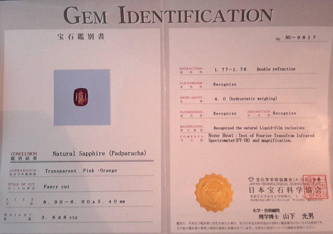 NU-9817