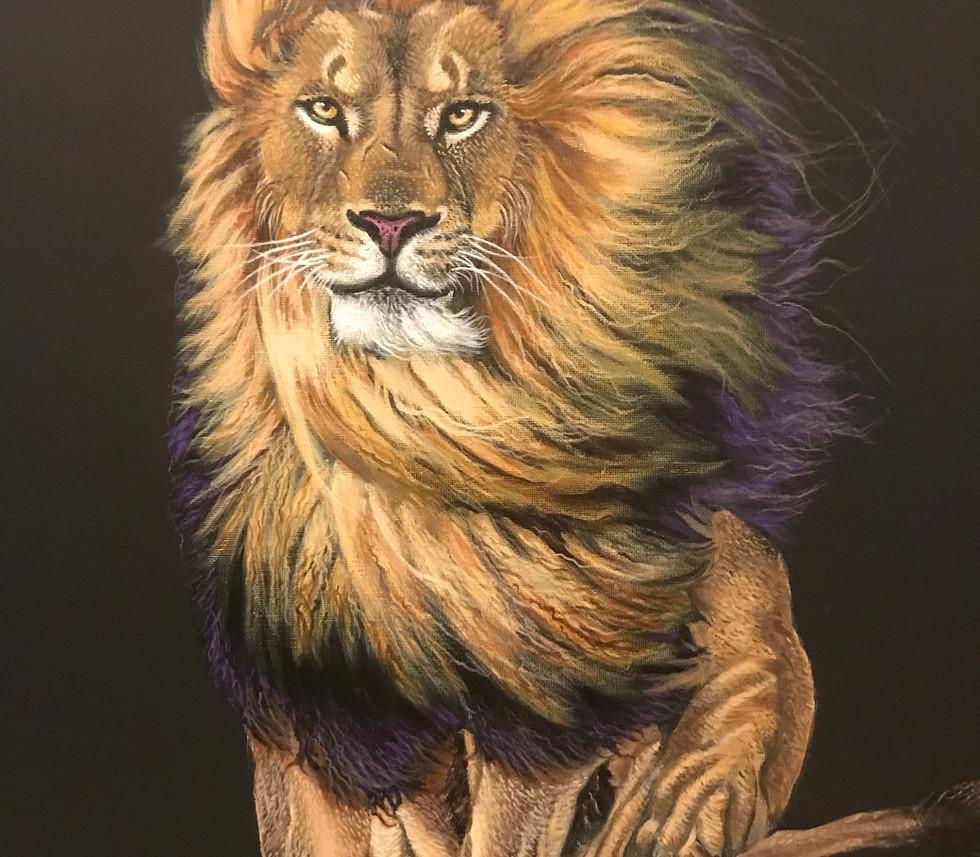 LION IN WIND