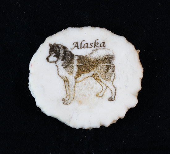 Alaska - Sled Dog Antler Magnet
