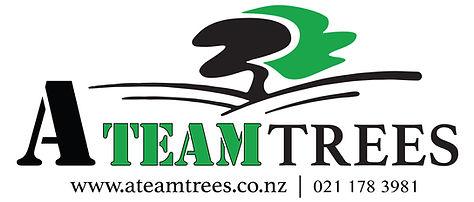 A team Trees Ltd