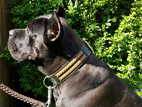 Black Leather Collar with 2 brown braids
