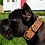 Thumbnail: Light brown padded leather collar