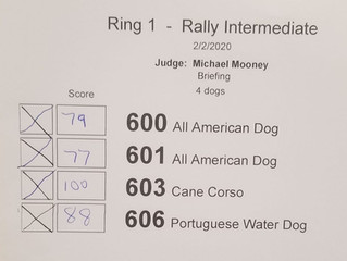 VENDETTA kills the competition and earns her next Rally title with incredible scores!