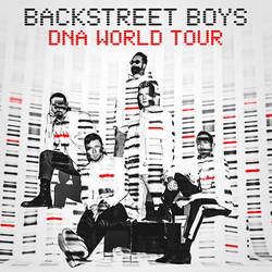 BackStreet-Boys-Concert