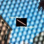 david-gray-white-ladder.jpg