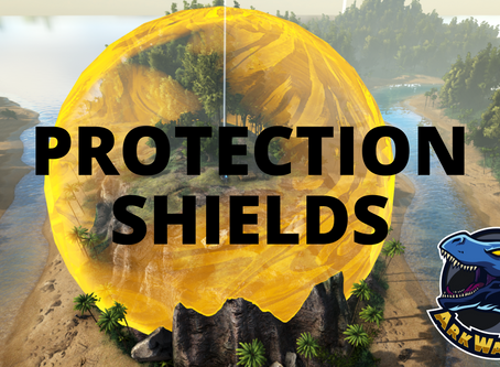 New Player & Raid Protection Shield