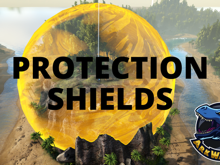 New Player & Raid Protection Shield
