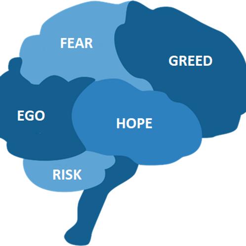 MC6. Video of Trading Psychology