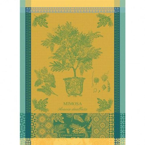 Garnier-Thiebaut - Mimosa Jaune