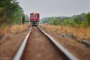 Voyage photo au Zimbabwe - Parc de Hwange