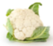 To understand thymic histology, it helps to compare the thymus to a cauliflower head.