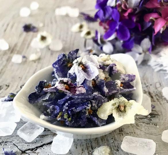 fleurs violettes.PNG
