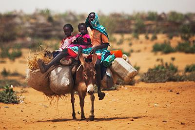 Adéu, Darfur