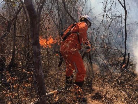 Uso dos drones no combate a incêndios