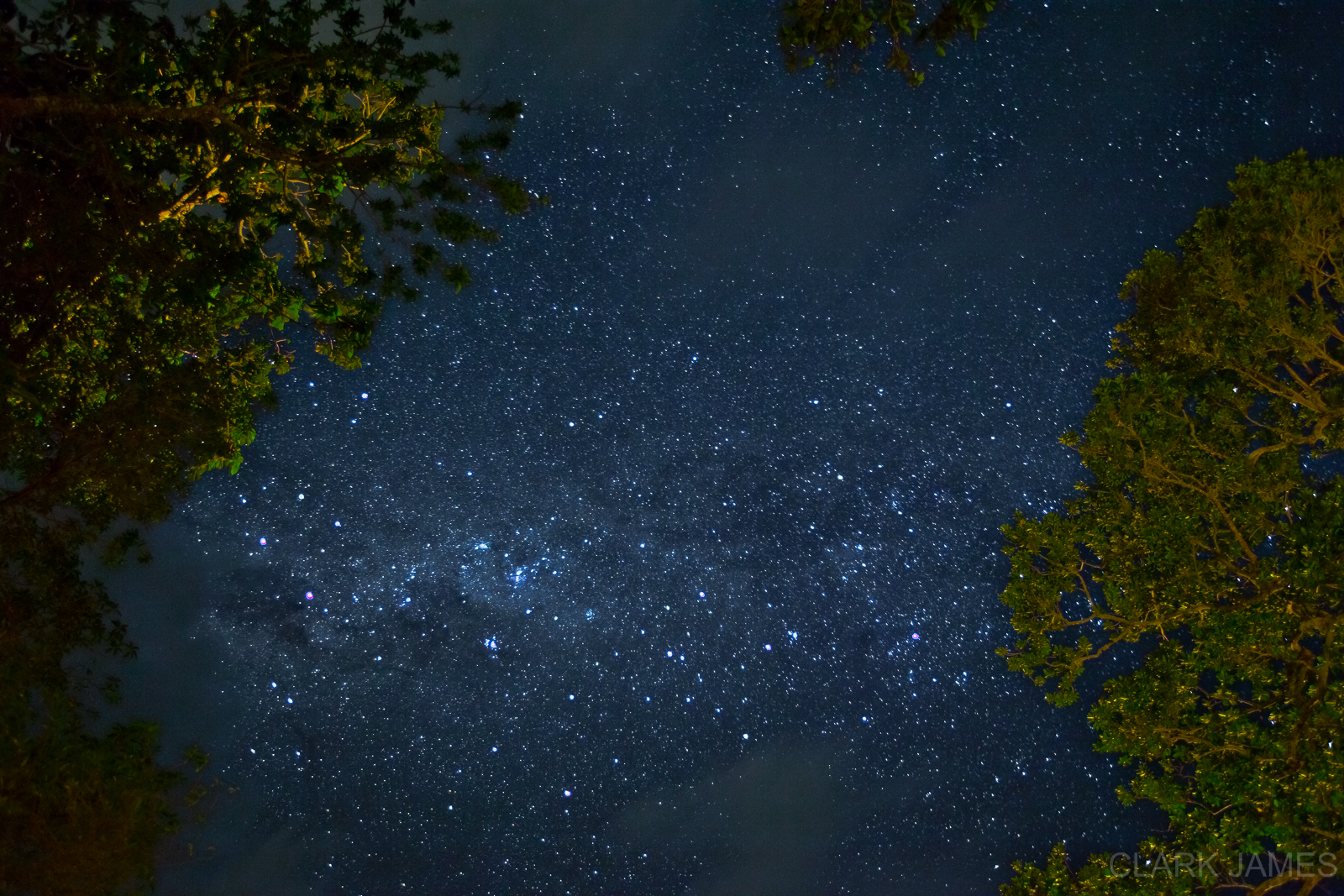 STARS ABOVE PORT VILA, VANUATU