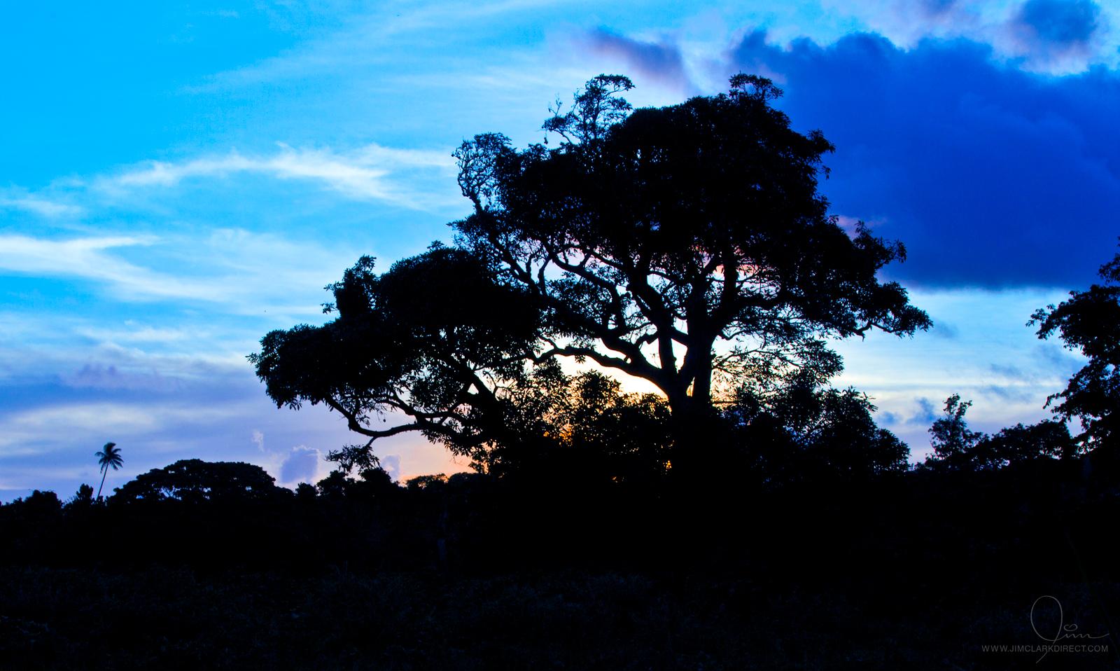 CANDY SUNSET ON EFATE, VANUATU