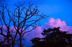 CANDY SUNSET IN PORT VILA, VANUATU