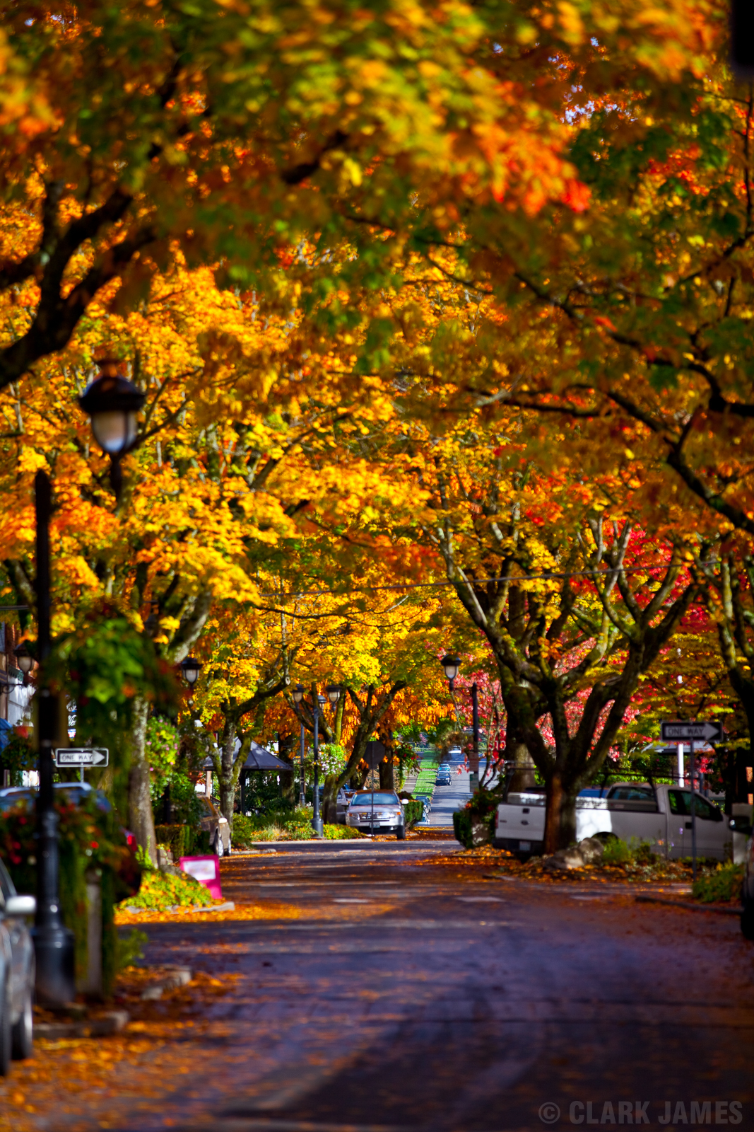 Fall in the Pacific NW