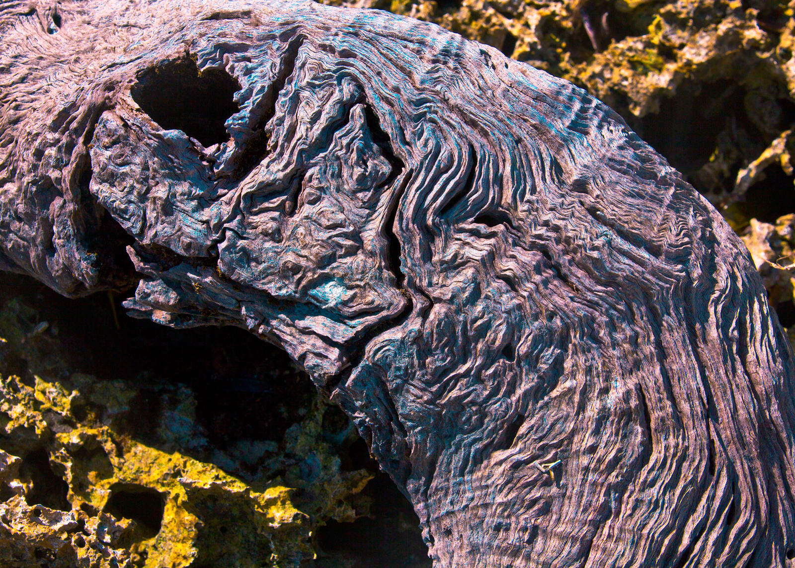 COLORED DRIFTWOOD ON KAKULA, VANUATU