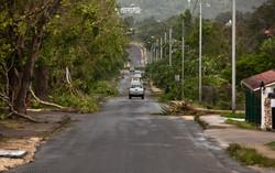 POST STORM VANIA ON EFATE, VANUATU