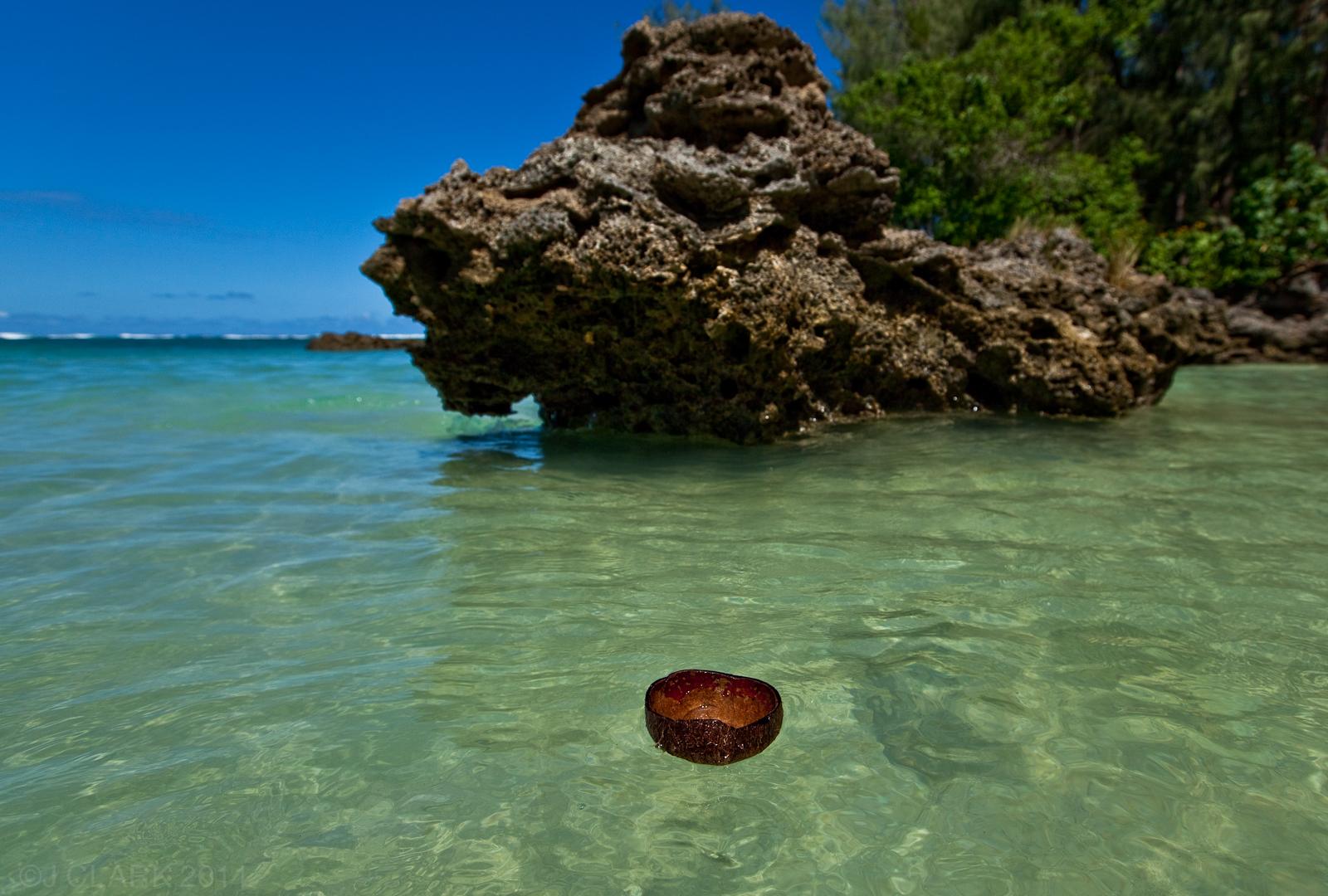 COCONUT SHELL ADRIFT IN VANUATU