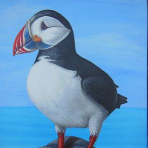 Scottish Wildlife Art