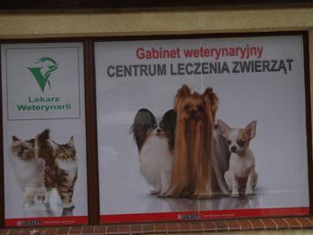 Centrum Leczenia Zwierząt w Szczecinku wpisane do Rejestru ZLZ
