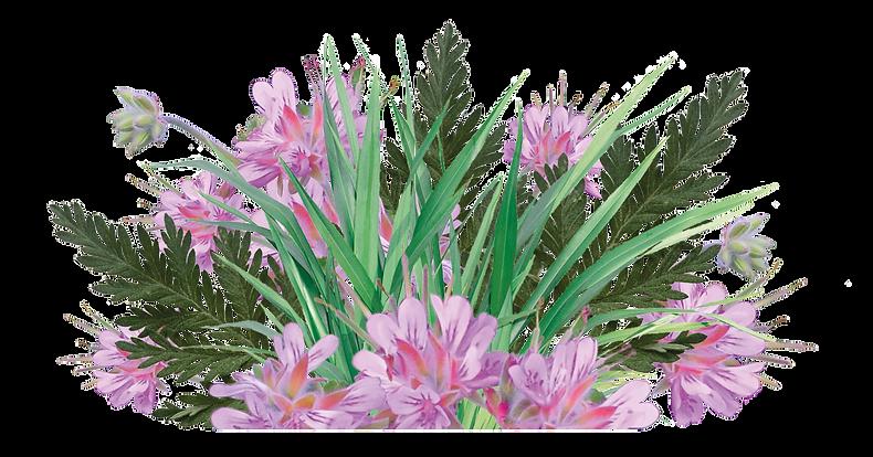 Foot blend Bouquet.png
