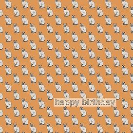 cat card.jpg