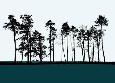 Great Tew trees card.jpg