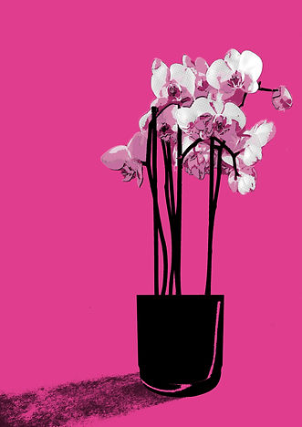 orchids in vase_A3.jpg