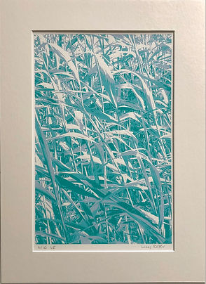 Docklands reeds screenprint lucy cooper